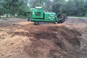 Armac-Stump Grinding