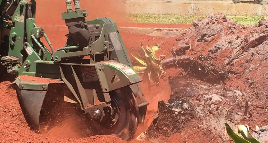 Armac Stump Grinding Bandit in Action