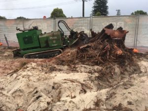 Stump removal in Busselton