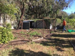 Removal of garden bed